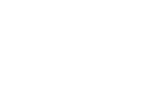 husum bisnode 2020